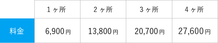1ヶ所/6,900円 2ヶ所/13,800円 3ヶ所/20,700円 4ヶ所/27,600円
