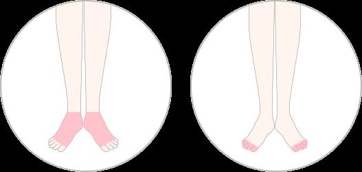 両足の甲と指