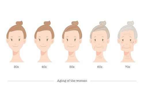 女性の老化